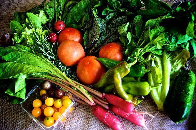 Pomen prehrane pri levkemiji in drugih oblikah raka