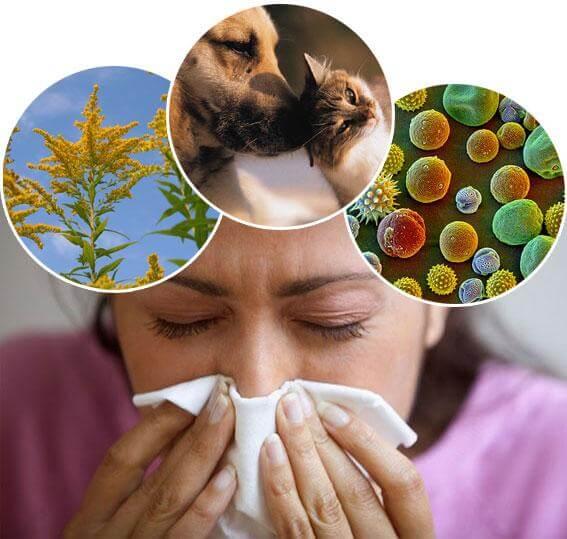 Alergije na pohodu – kaj pa zdaj?