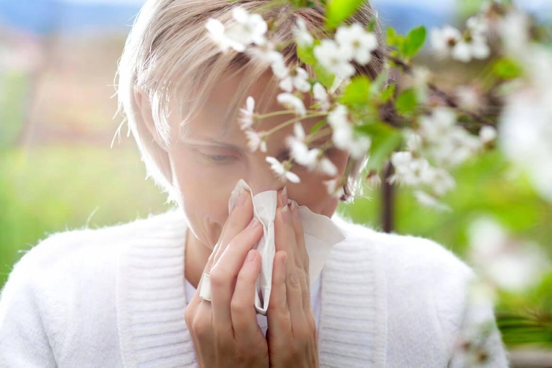 Najpogostejše alergijske reakcije vključujejo kihanje in smrkanje
