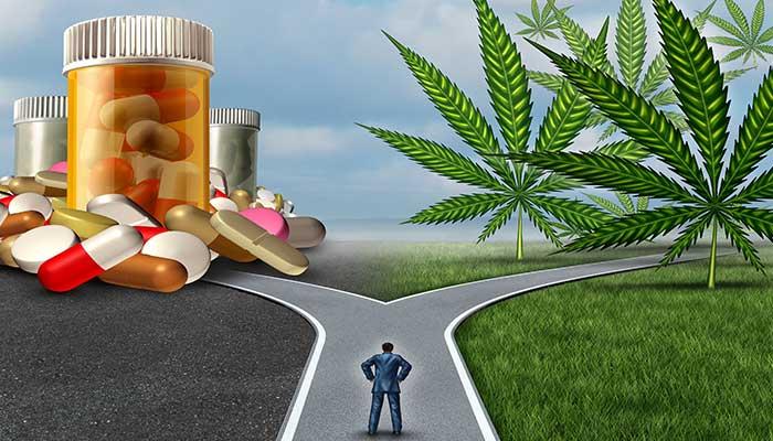 Na manj kanabinoidov v telesu vplivajo stres, slaba prehrana in zdravila.