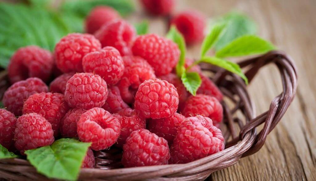 Holesterol – zakaj je povišan, katero hrano uživajte in kateri se raje izognite