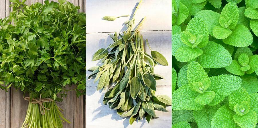 1468508255-herbs