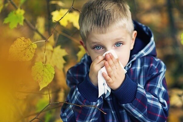Little boy aged 3 cleaning his nose in autumn. The boy looks quite pale and sick.