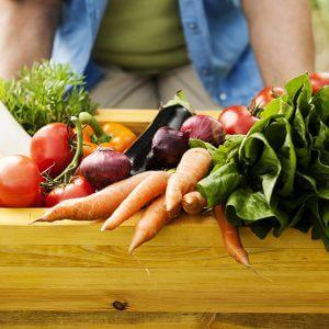 potrjena-studija-v-franciji-dokazala-da-ekoloska-hrana-zmanjsa-tveganje-za-rakom