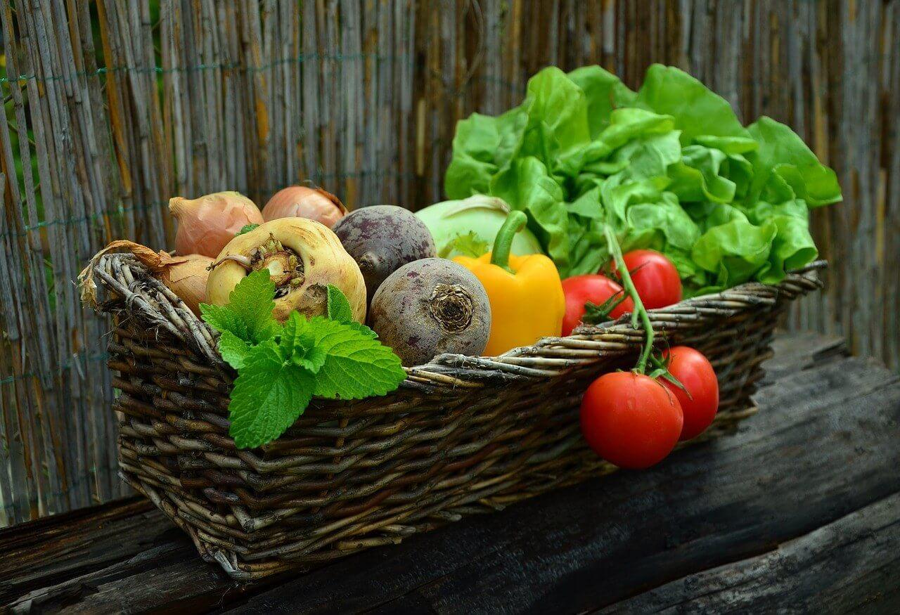 Uživanje zelenjave in sadja zmanjšuje tveganje za raka – ne pozabite na raznolikost