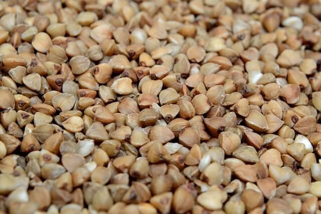 Ajda – zdrava izbira med žiti