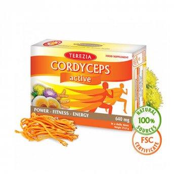cordyceps-active-60-kapsul